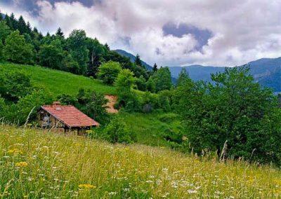 Античният път в местността Амзово